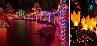 canada lights up for philips lighting