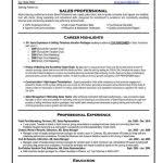 Resume Template It Professional Resume Template Professional 59 Best Best Sales Resume Templates