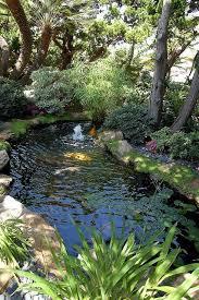 583 best gardening water gardens images on pinterest pond ideas