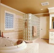 glass blocks for bathroom walls