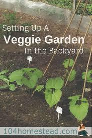vegetable garden sun requirements setting up a veggie garden in the backyard
