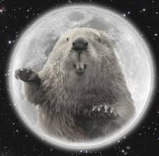 What Day Does Thanksgiving Fall On 2014 Full Moon For November 2017 The Full Beaver Moon The Old