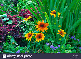 flower gardens flower beds garden paths and flower arrangements at the english