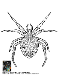 complicated spiders complicated coloring free colouring