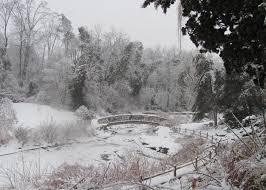 winter photos gd konstantine u0027s blog