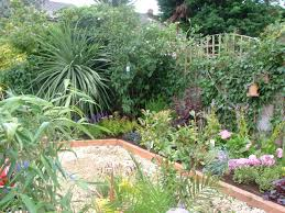 amazing planting small gardens small garden plant ideas alices