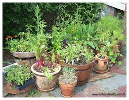 fall container herb gardens herb garden in containers bonnie