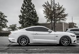 images for 2015 mustang steeda mustang sport springs progressive 15 17 gt v6 555 8210