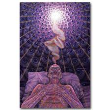 compare prices on trippy life online shopping buy low price