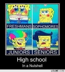 High School Freshman Memes - ashley s high school blog from freshman to senior and all the in