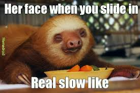 Woopty Doo Meme - the best sloth memes memedroid