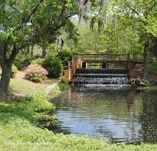 The Ivy Cottage Wilmington Nc by 163 Best Wilmington Nc Images On Pinterest Wilmington Nc North