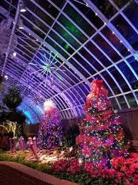 phipps conservatory christmas lights phipps conservatory december 2017 picture of phipps conservatory
