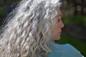 perm for grey hair stunning gray hair styles for women wehotflash