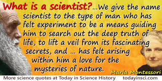 montessori quote what is a scientist large image 800 x 400 px