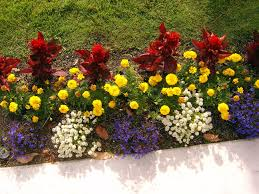 garden design garden design with corona florist uamp nursery pte