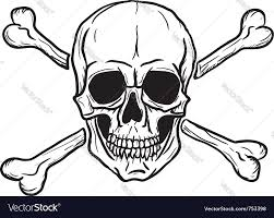 skull and crossbones royalty free vector image