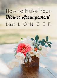 how to make your flowers last longer gold and bloom
