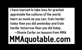 motivational quotes with pictures many mma u0026 ufc i have learned