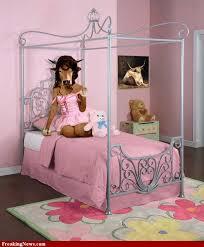 Pink And Black Bedroom Design Best  Pink Black Bedrooms Ideas - Girls bedroom ideas pink