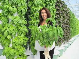 future growing llc to inspire healthy and sustainable living