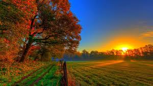 sunset autumn road fields fence sunset meadow nature gorgeous