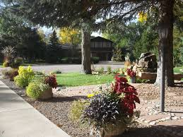 easy landscaping ideas for a front yard with rock garden and palm