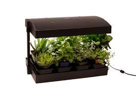 grow light indoor garden growlight garden grow your own greens crgardencentre com