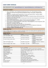 Testing Profile Resume Java Resumes Eliolera Com