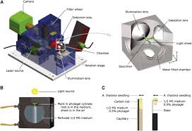 new technologies for 21st century plant science plant cell