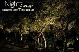 Landscape Lighting Trees And Central Low Voltage Landscape Lighting Can Last