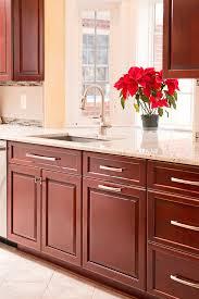 phoenix md kitchen saver