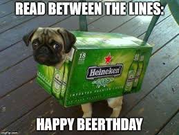 Happy Birthday Pug Meme - top 100 original and hilarious birthday memes part 3