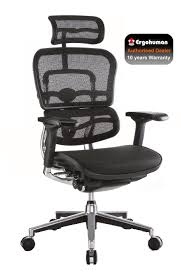 2010 Office Furniture by Ergohuman Mesh High Back Ergonomic Office Chair 2010