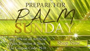 palm sunday palms for sale everlasting palm trees branches for palm sunday palm sunday and