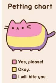 Pusheen Cat Meme - pusheen the cat on pinterest pusheen cats and gifs memes