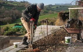 planting a native hedge hedge planting u2013 dig delve u2013 an online magazine about gardens