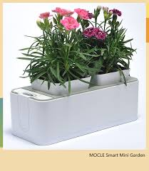 Click And Grow by Smart Mini Garden Better Than Click And Grow Factory Direct In