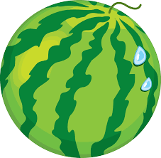 watermelon png images free download