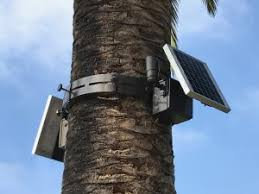 solar tree lighting light pole manufacturer 1254 industries