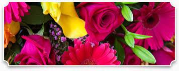 wholesale wedding flowers wholesale wedding flowers weddings wedding planner florist