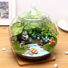 ecosystem bottle plant gifts gifts for men gifts for home
