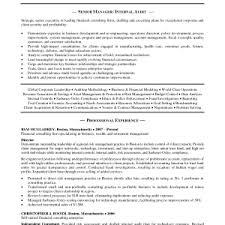 Sample Resume For Internal Auditor by External Auditor Sample Resume Paper Registration Form Template