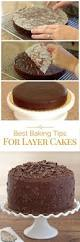 How To Decorate Cake At Home by 25 Best 2 Layer Cakes Ideas On Pinterest 3 Layer Cakes