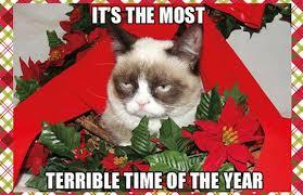 Grumpy Cat Memes Christmas - 25 hilarious christmas memes complex