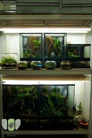 1056 best aquascaping images on pinterest aquascaping aquarium
