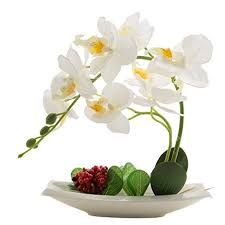orchid arrangements phaleanopsis orchid silk flower arrangement with white