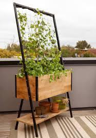 wshg net blog grow a bigger garden in a smaller space featured