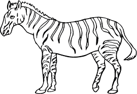 zebra coloring pages cute ba zebra coloring page free printable