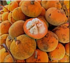 its all about the philippines top 20 popular fruits in the